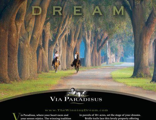 Via Paradisus Print Ad Design